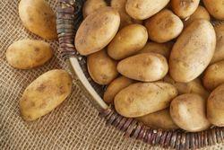 При какой температуре замерзает картошка при хранении на балконе