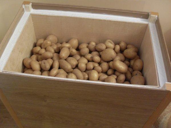 Хранение картофеля в утепленном ящике на балконе