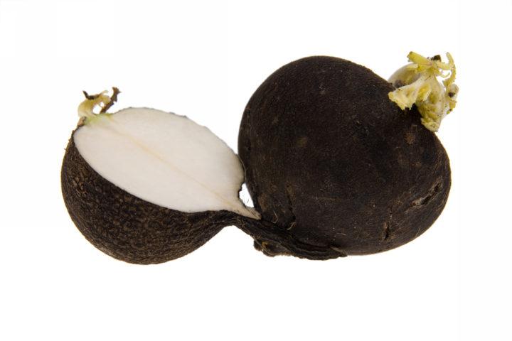 Редька черная: польза и вред для здоровья