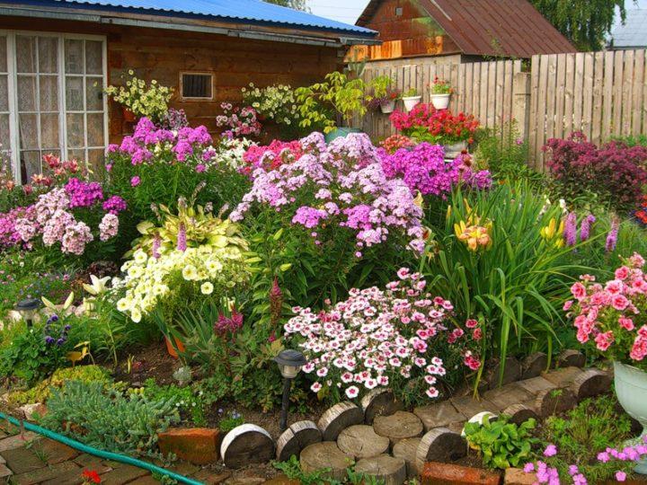 Садовый вариант клумбы