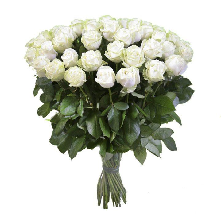 Белые розы - символ верной и вечной любви