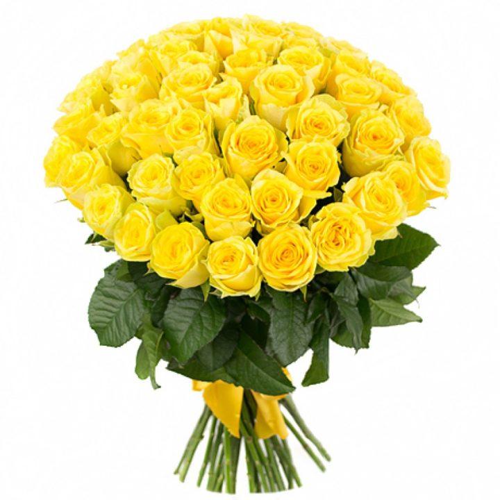 Желтые розы как символ примирения