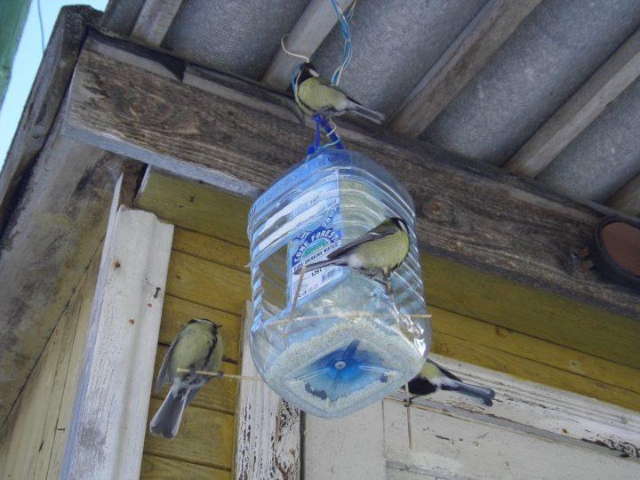 Жилье для птиц из пластиковой бутылки