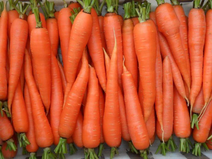 Наибольшая польза от сырой моркови
