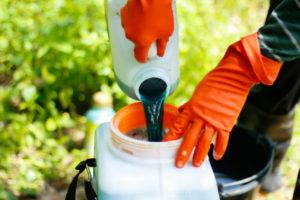 Как приготовить и использовать бордосскую смесь