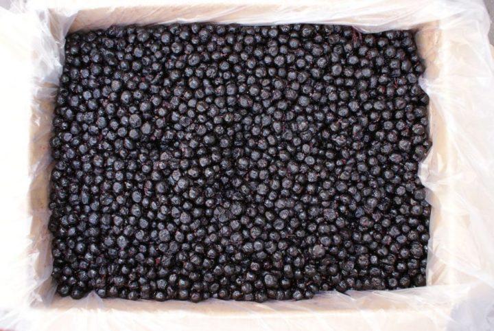 Урожай черноплодной рябины