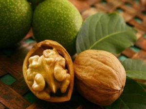 Как вырастить грецкий орех из семян в виде ореха