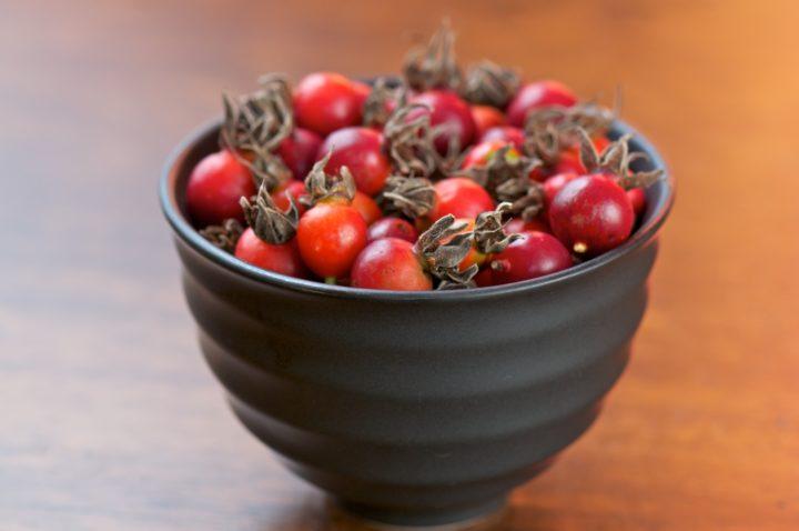 Заготовленные плоды шиповника