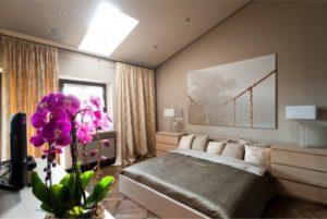 Какие комнатные цветы и растения можно держать в спальне