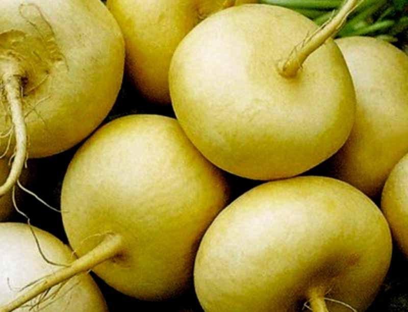 Уток можно кормить любыми корнеплодами